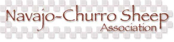 N_CSA_logo